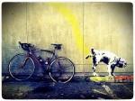 Banksy Dog Valentines