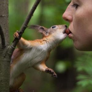 Squirrel kiss