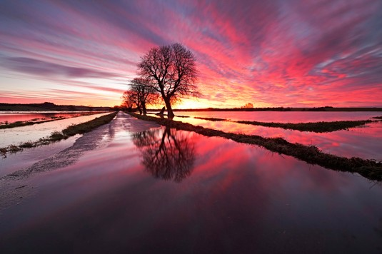 Flooded Somerset Levels Peter Spencer