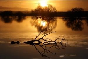 floods, www.westernmorningnews.c